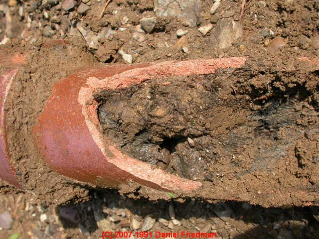 Septic or Sewer Line Replacement: when, how, and why to