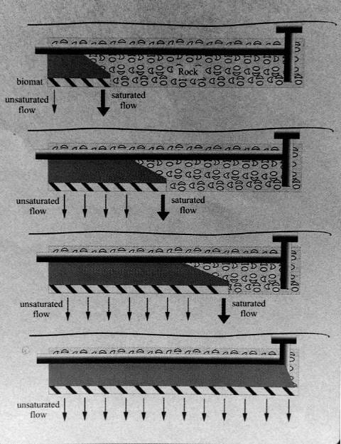 Click For Larger Image This Ilration Shows The Stages In Soil Clogging Of A Septic