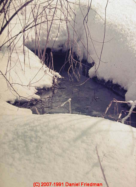 Photograph Of A Suspicious Wet Area In Deep Snow On A Residential Property  Near The Reported