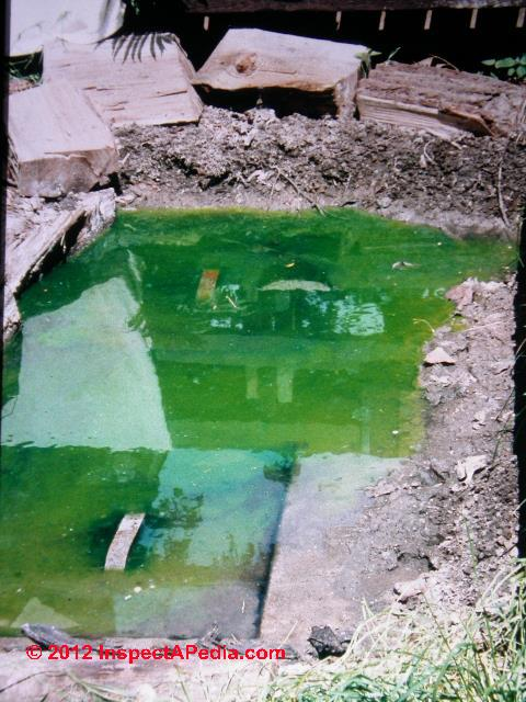 How To Spot Septic Dye Breakouts Or Surface Seepage
