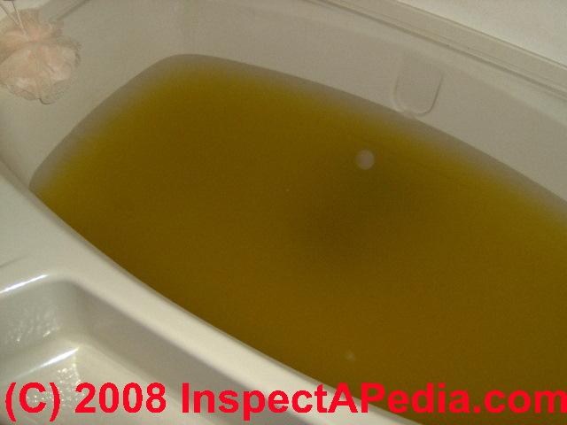 Sewage Backup Into Bathtub