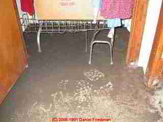 PHOTO of sewage contamination sludge on the floor in a basement from a sewer line backup
