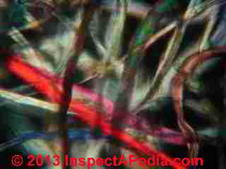 House dust particles - fabric or carpet fibers in polarized light (C) InspectApedia