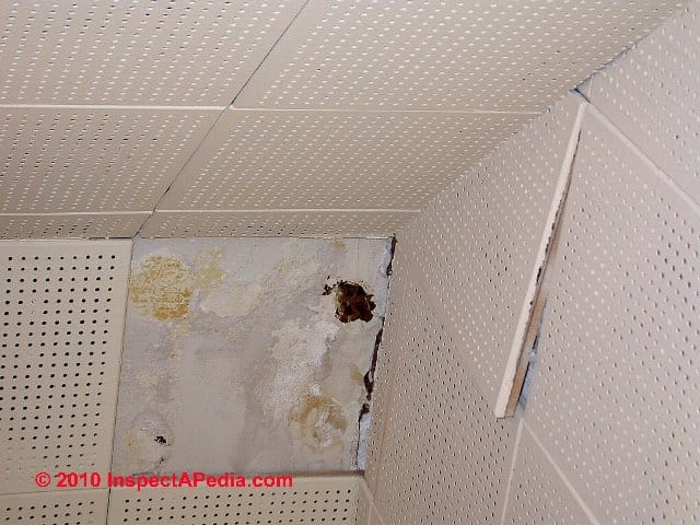 Excellent 12 Ceiling Tile Small 12 Ceramic Tile Square 13X13 Floor Tile 18 Ceramic Tile Youthful 24 X 24 Ceramic Tile Dark3X6 Ceramic Tile Asbestos Ceiling Tiles: How To Recognize Ceiling Tiles That May ..