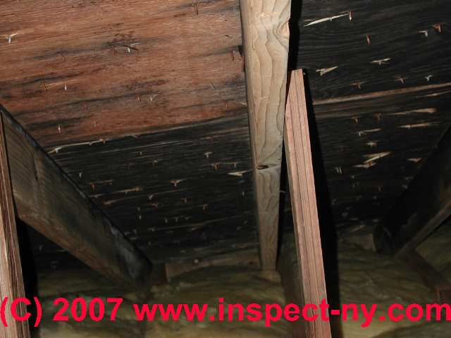 Attic Mold What Does Mold In Attics Look Like