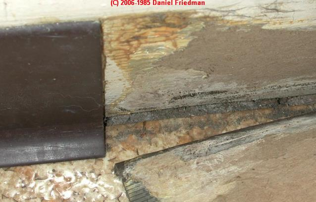 What Does Black Mold Look Like Toxic Black Mold Growth