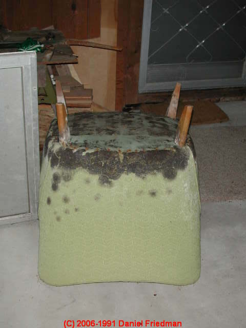 upholstered furniture can be quite moldy if it has been exposed to