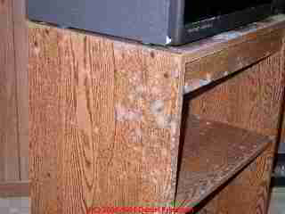 Photo of moldy TV stand in an upper floor den of a house subject to high moisture conditions