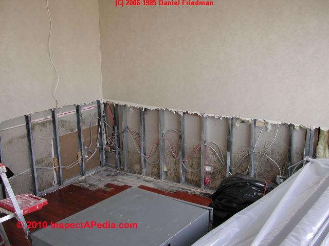 Test Cuts In Walls Ceilings To Find Hidden Mold Hidden