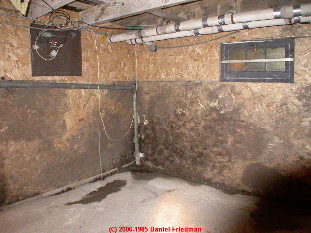 Inspirational Cleaning Mold Basement Walls