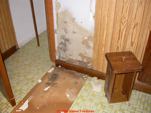 Mold In Bathroom Landlord Responsibility mold & iaq hazard advice for rental tenants - what to do about a
