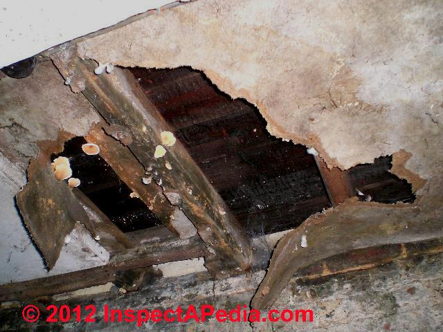 Asbestos Content In Fiberboard Building Sheathing