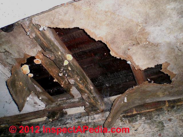 What is fiberboard sheathing asbestos home design idea for Gypsum board asbestos