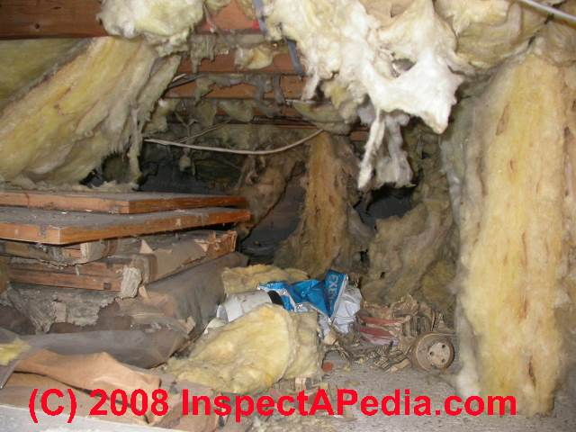 Crawl Space Debris Amp Junk Removal Why Amp How