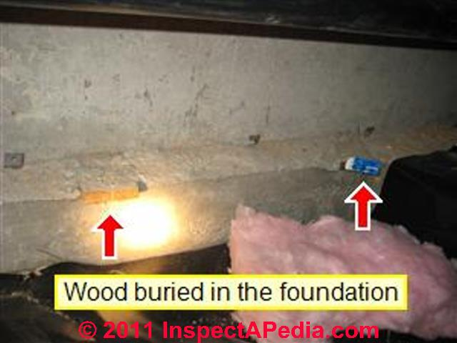 Termite Inspection Case Report Shows How To Find Termite