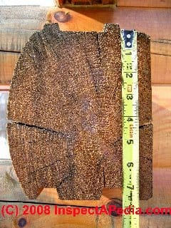 Cross section of a modern D-shaped solid log used in log homes