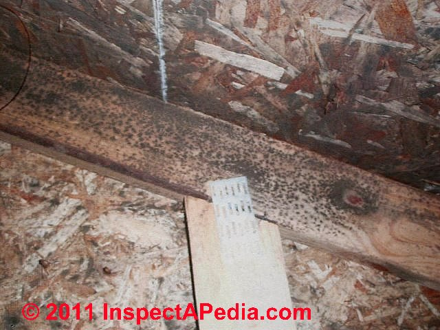 Osb oriented strand board sheathing definition properties for What is roof sheathing definition