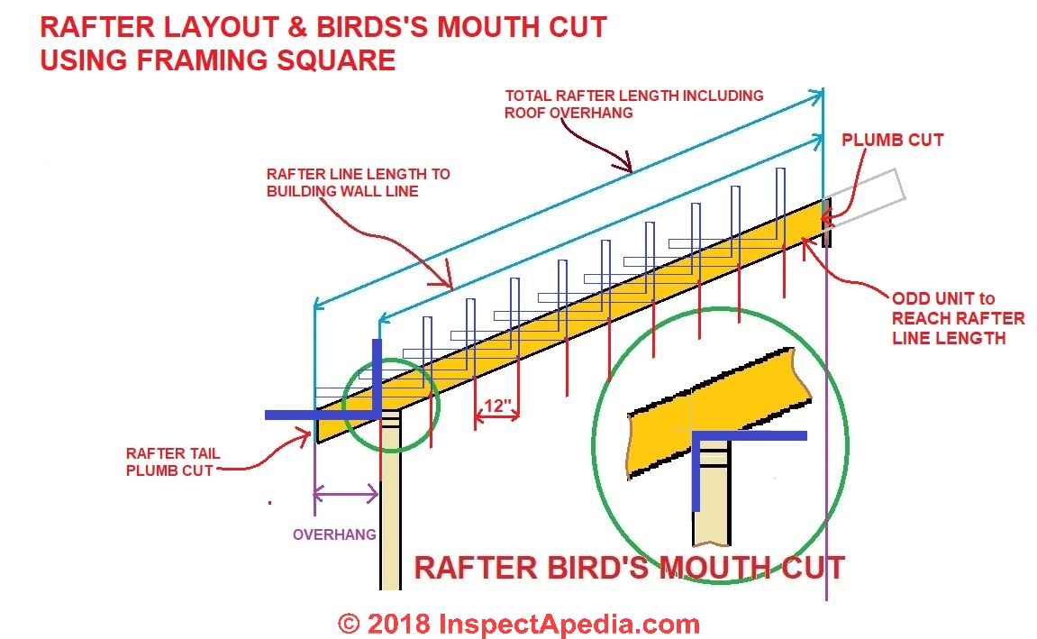 Bird s mouth cut