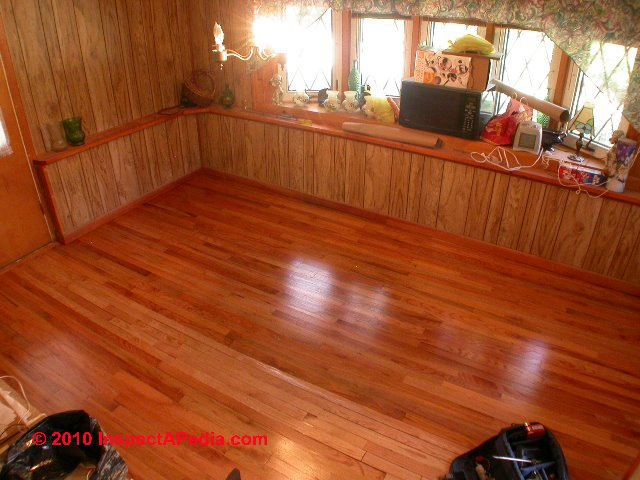 Termite Inspection Indoors Indoor Clues Show How To Find