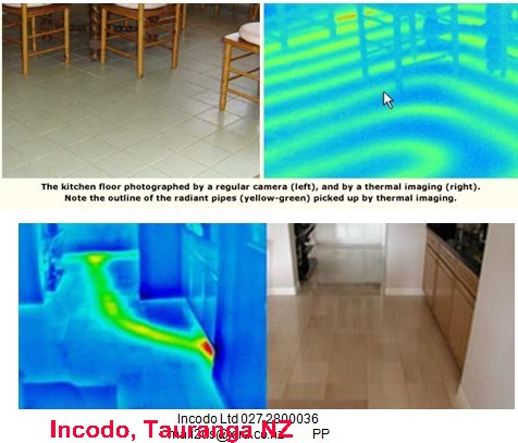 Thermal Imaging For Structural Wood Timber Or Beam Damage