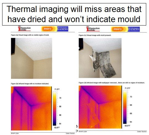 New Zealander S Photographs Demonstrate How Ir Thermal Imaging Miss Hidden Mold