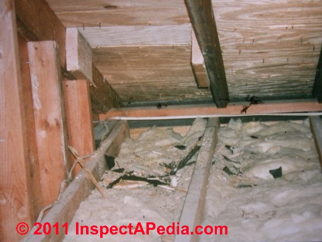 Plywood products used in home construction floor wall for Exterior wall sheathing types