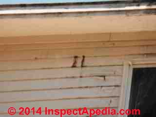 Roof ice dam leaks leave stains on exterior walls (C) Daniel Friedman